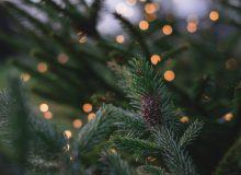 nachhaltige Weihnachten
